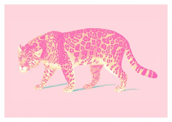 Jaguar Vintage Pop Print